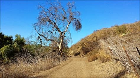 Today On The Trail: Carbon Canyon Regional Park