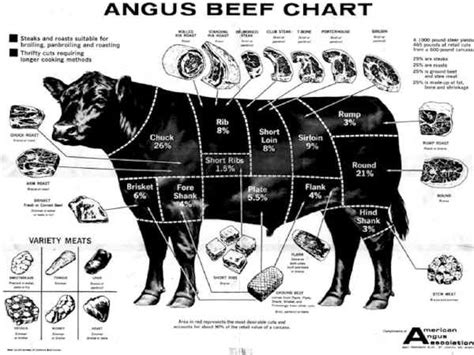 Google Answers: How Much Meat on a Cow?
