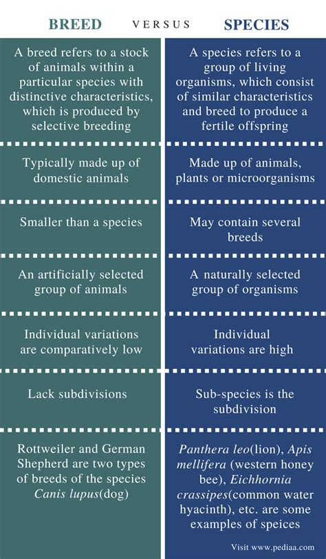 Difference Between Breed and Species   Definition, Purpose