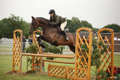 NEW Haygain Grand Prix Working Hunter Classes for Equifest