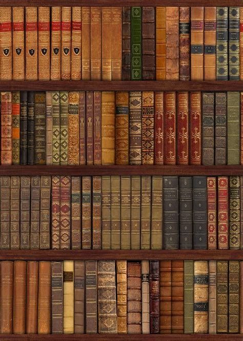 Library Bookcase, old books Wall Mural Decor Photo
