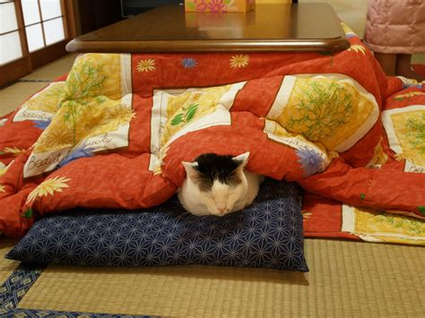 Never Leave The Warmth Of Your Bed With This Japanese